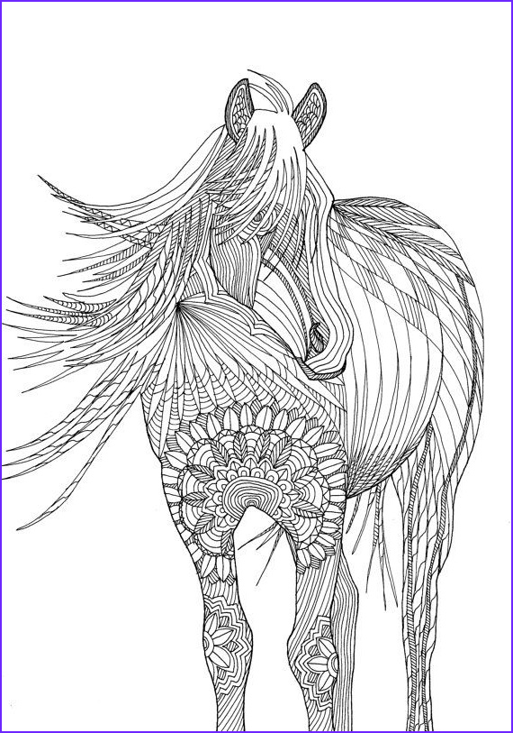 Horse Coloring Book for Adults Luxury Stock Horse Amazing Animals Colouring Pages by Joenay