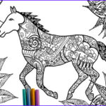 Horse Coloring Book For Adults Unique Photos Items Similar To Horse Coloring Page On Etsy