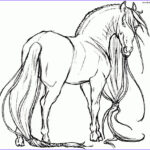 Horse Coloring Pages For Adults Beautiful Photos Grown Ups Coloring Pages Of Realistic Horse
