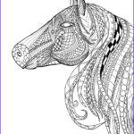 Horse Coloring Pages For Adults Beautiful Stock Horse Head Zentangle Adult Coloring Page