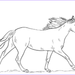 Horse Coloring Pages Printable Cool Photos Running Horse Coloring Page