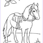Horse Coloring Pages Printable Inspirational Gallery 17 Best Images About Coloring Horses On Pinterest