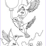 Hummingbird Coloring Pages Cool Photography Free Printable Hummingbird Coloring Pages For Kids