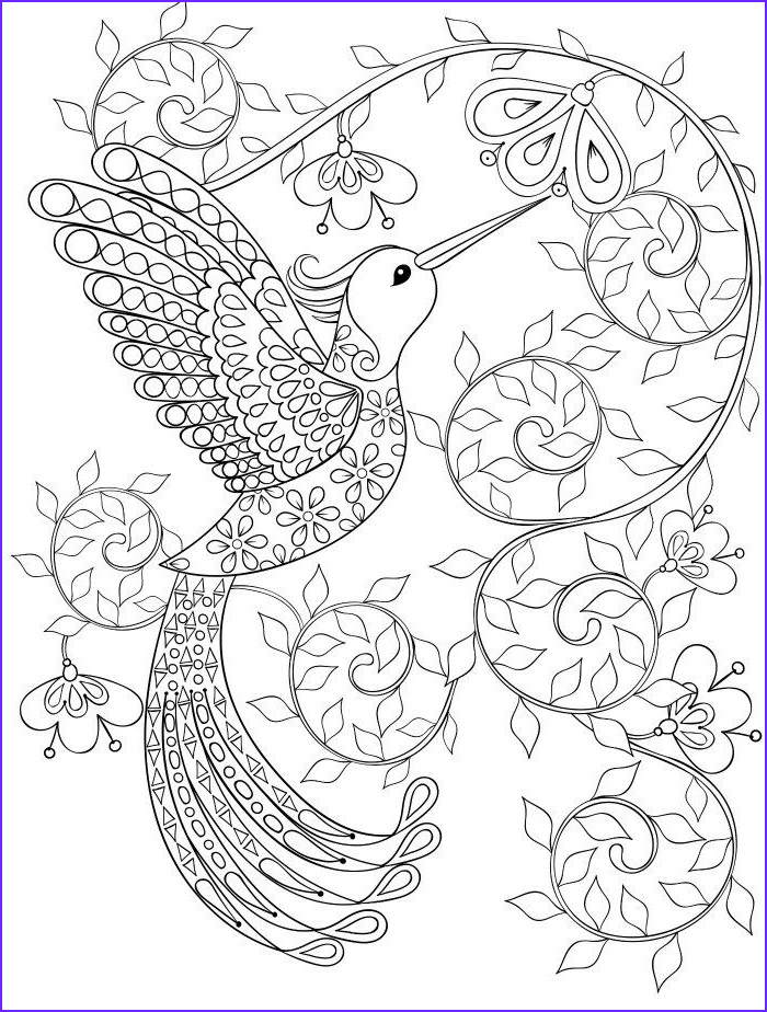Hummingbird Coloring Pages for Adults Awesome Stock 20 Gorgeous Free Printable Adult Coloring Pages Page 11