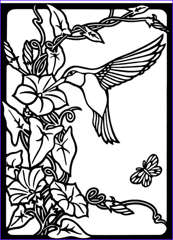 Hummingbird Coloring Pages for Adults Beautiful Gallery Nature Hummingbird Image by Tharens Bucket