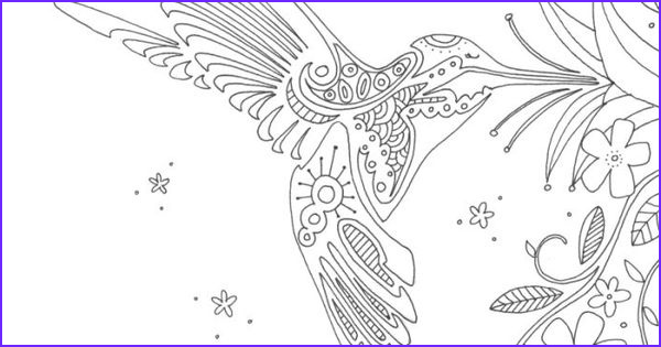 Hummingbird Coloring Pages for Adults Elegant Collection Hummingbird