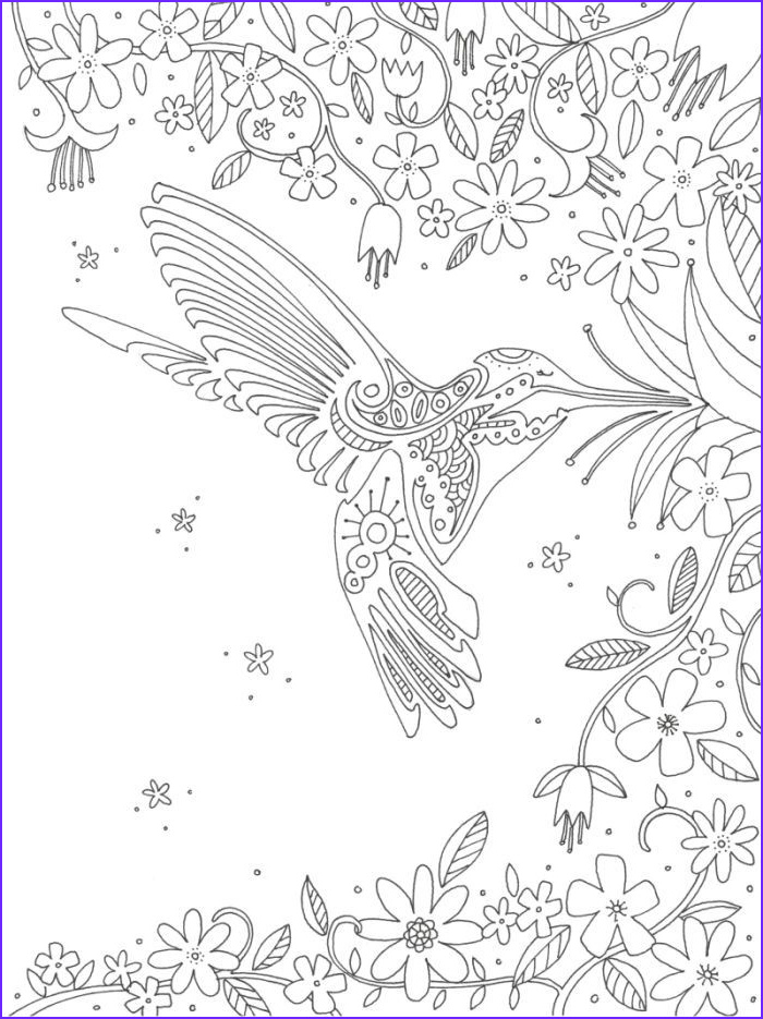 Hummingbird Coloring Pages for Adults Luxury Photos Hummingbird