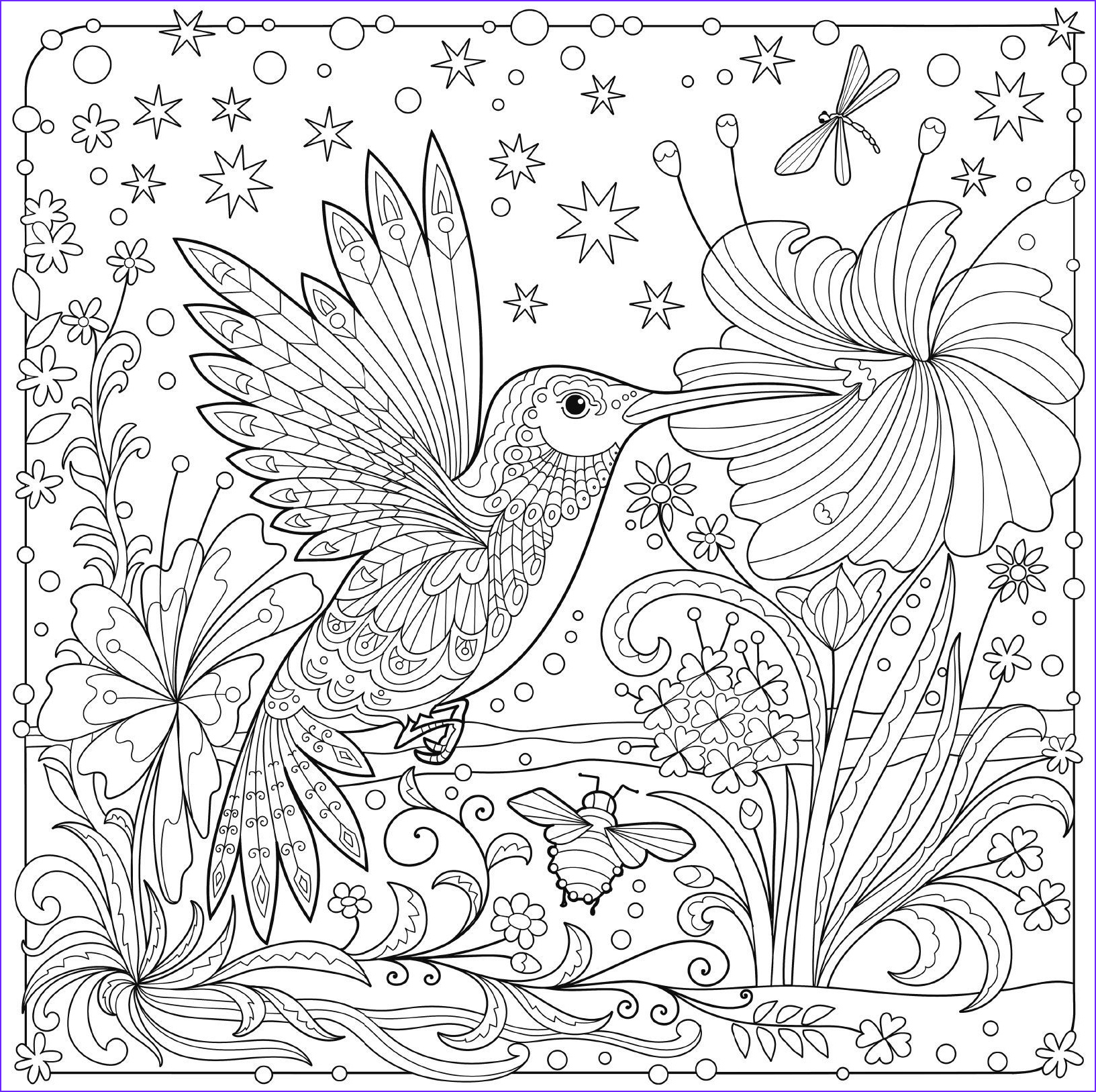Hummingbird Coloring Pages for Adults New Stock Hummingbird Colouring Page
