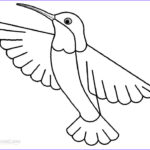 Hummingbird Coloring Pages Luxury Photos Printable Hummingbird Coloring Pages For Kids