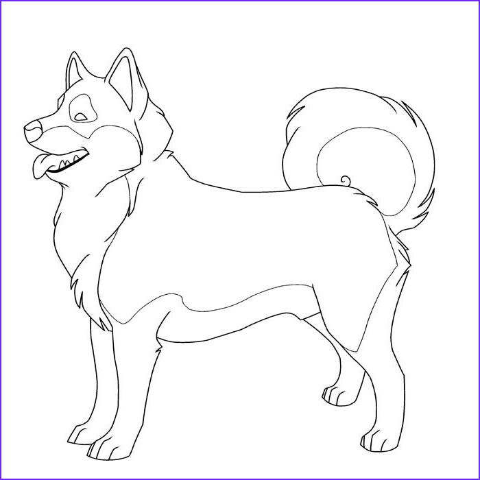 Husky Coloring Page Cool Photos Free Printable Husky Pictures to Color