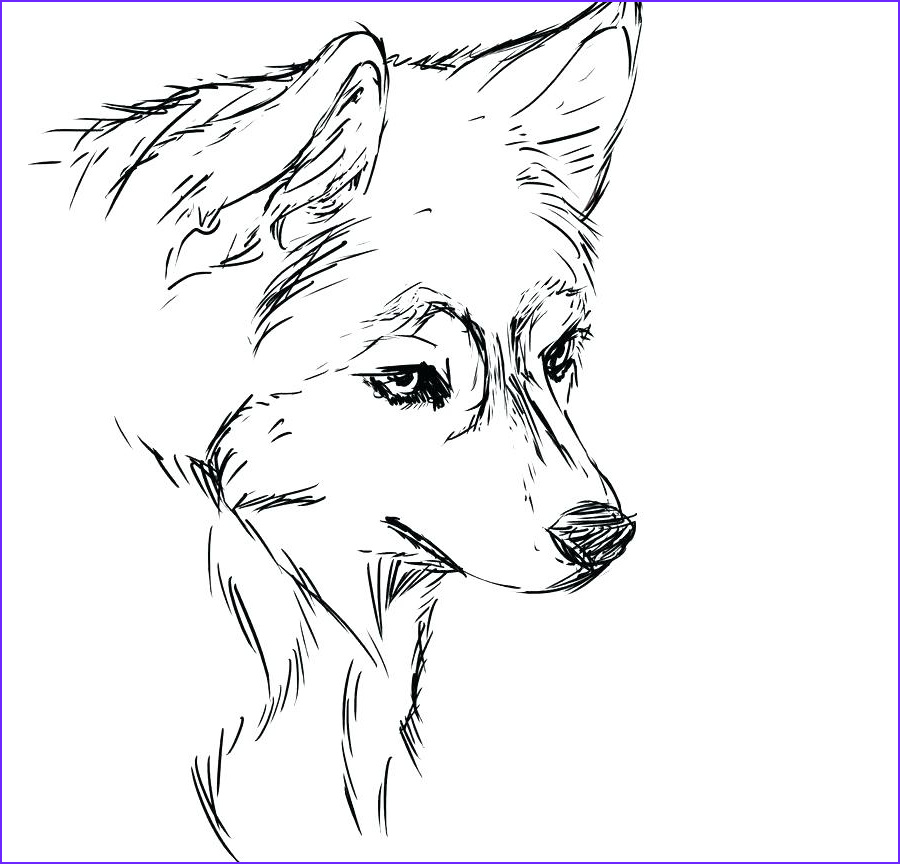 Siberian Husky coloring puppy coloring