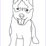 Husky Coloring Page Unique Stock Husky Coloring Pages Best Coloring Pages for Kids
