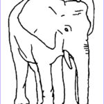Indian Elephant Coloring Pages Printable Best Of Collection African and Indian Elephants Coloring Page