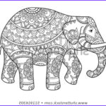 Indian Elephant Coloring Pages Printable Cool Stock Hand Drawn Decorative Outline Elephant Indian Stock Vector