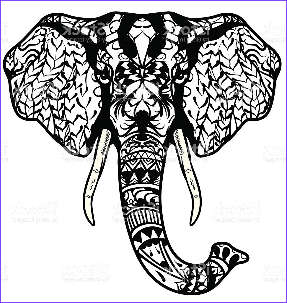 indian elephant drawing color