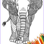 Indian Elephant Coloring Pages Printable Unique Photos Elephant Coloring Page Printable Africa India By