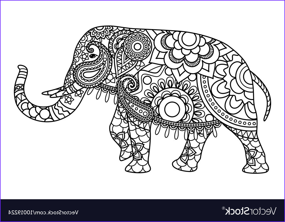 indian elephant coloring pages template vector