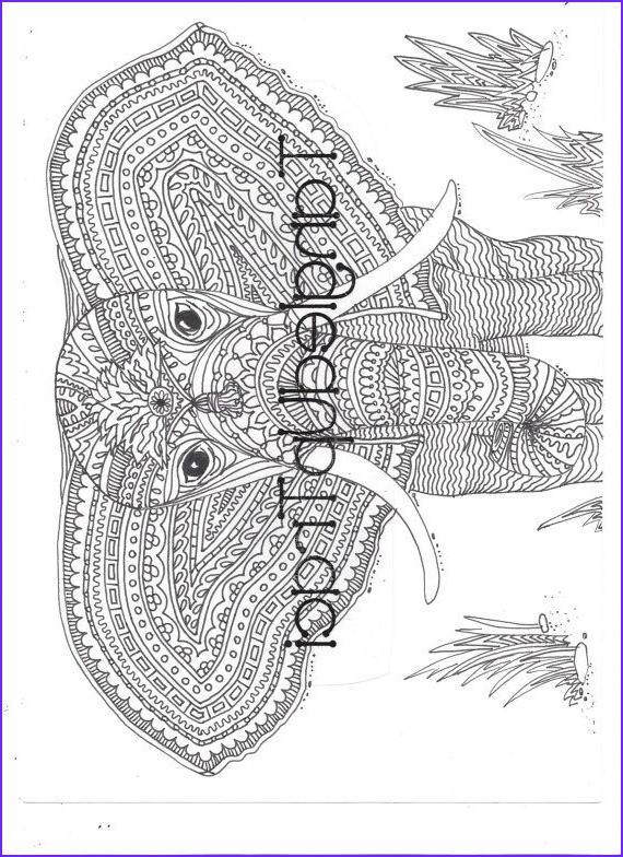 Intricate Coloring Book Inspirational Photos Detailed and Intricate Elephant Zentangle Coloring Page to