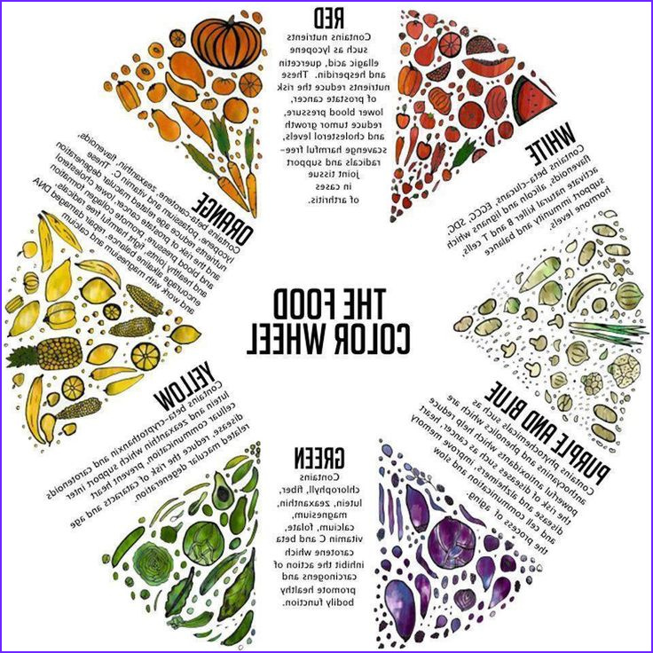 Is Food Coloring Safe to Eat Elegant Collection the Food Color Chart Infographic Diy