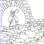 Jesus The Good Shepherd Coloring Page Unique Gallery 55 Best Images About Our Bible Coloring Pages On Pinterest