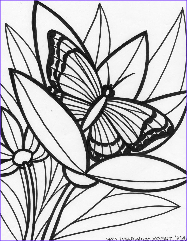 Jungle Coloring Pages Beautiful Gallery Jungle Coloring Pages Coloring Pages Jungle Animals
