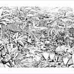 Jungle Coloring Pages Cool Collection Jungle Forest Animals Jungle & Forest Adult Coloring Pages