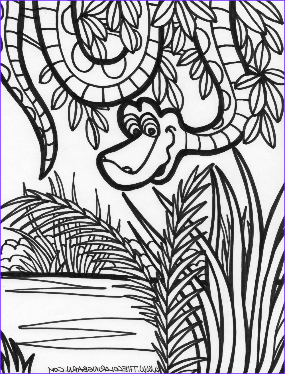 Jungle Coloring Pages Cool Photos Jungle Coloring Pages