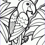 Jungle Coloring Pages Elegant Collection Jungle Coloring Pages Animal Coloring Pages