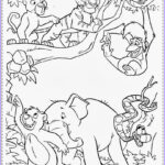 Jungle Coloring Pages Elegant Photos Realistic Jungle Animal Coloring Pages