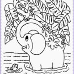 Jungle Coloring Pages Luxury Collection Realistic Jungle Animal Coloring Pages