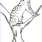 Kids Free Coloring Pages Awesome Photos Free Printable Cheetah Coloring Pages For Kids