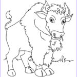 Kids Free Coloring Pages Inspirational Image Free Printable Bison Coloring Pages For Kids