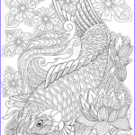 Koi Coloring Pages Elegant Collection Carp Koi Fish Adult Coloring Page Zentangle Doodle Coloring