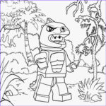 Lego Coloring Book Elegant Gallery Free Coloring Pages Printable To Color Kids
