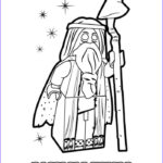 Lego Dimensions Coloring Pages Inspirational Gallery Vitruvius Is A Lego Minifigure And Master Builder From The