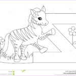 Letter Coloring Books Awesome Photography Animal Alphabet Z Coloring Page Royalty Free Stock