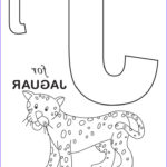 Letter Coloring Books Unique Photos Letter J Coloring Pages To And Print For Free
