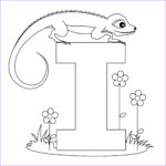 Letter I Coloring Pages For Preschoolers Luxury Photos Image Detail For Animal Alphabet Letter I Coloring