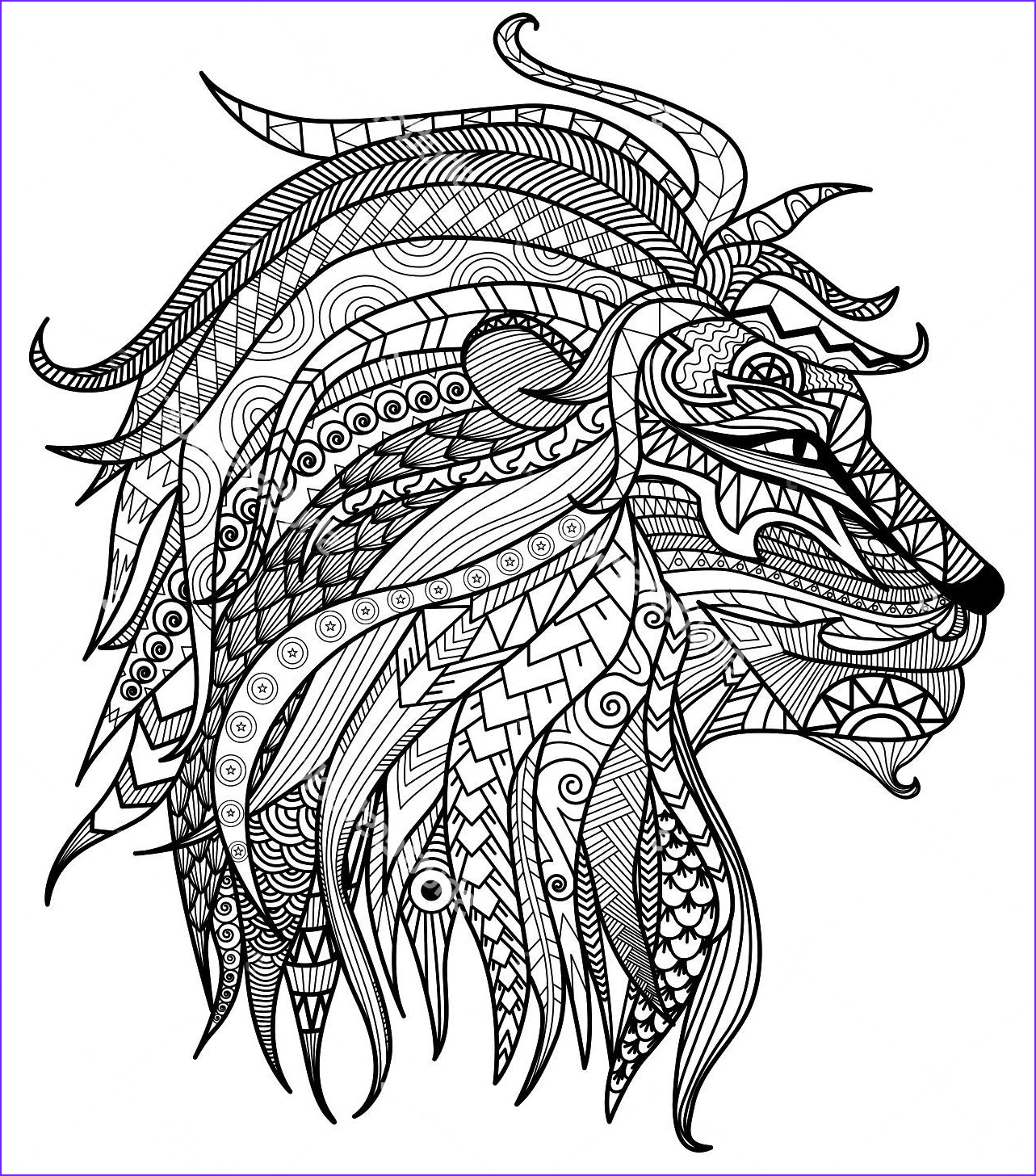 Lion Coloring Book Best Of Photos Adult Coloring Pages Lion Head