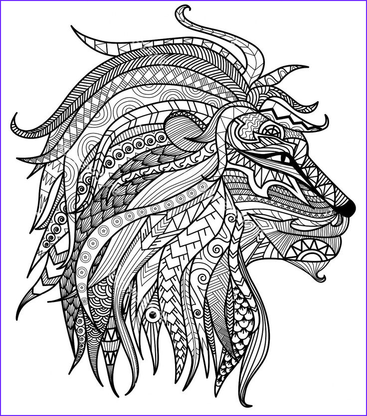 Lion Coloring Book New Photos Adult Coloring Pages Lion Head