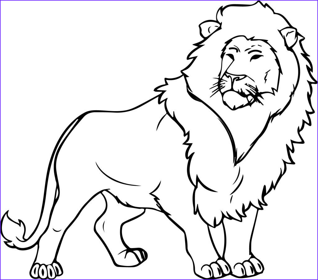 Lion Coloring Book Unique Gallery Jungle Coloring Pages Best Coloring Pages for Kids