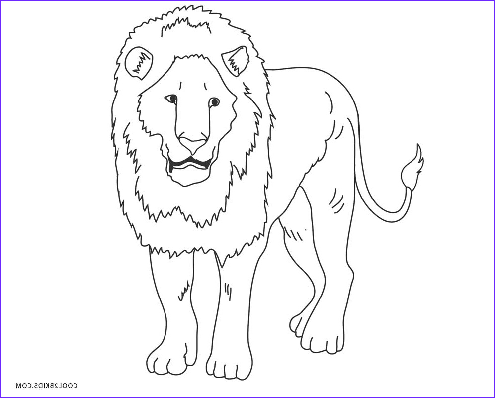 Lion Coloring Book Unique Photography Free Printable Lion Coloring Pages for Kids