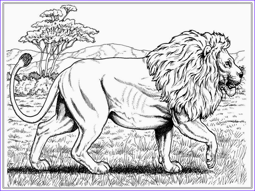 Lion Coloring Pages Beautiful Photos Lion Coloring Pages Printable
