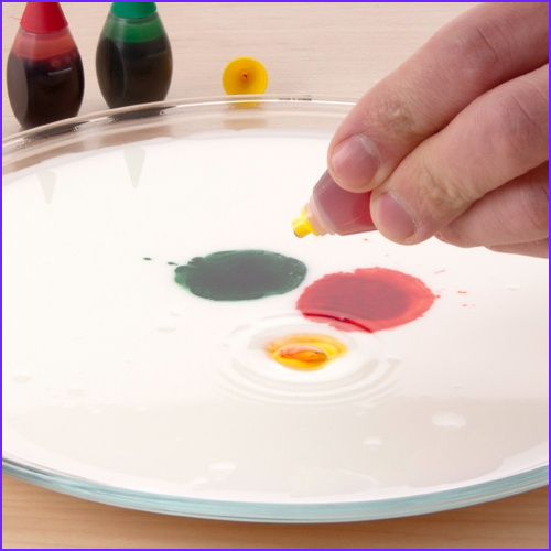 Milk and Food Coloring Luxury Gallery Exploding Rainbow Milk Magic Pour Milk Into A Pie Dish