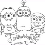 Minion Coloring Book Luxury Photography Goo S © Despicable Me