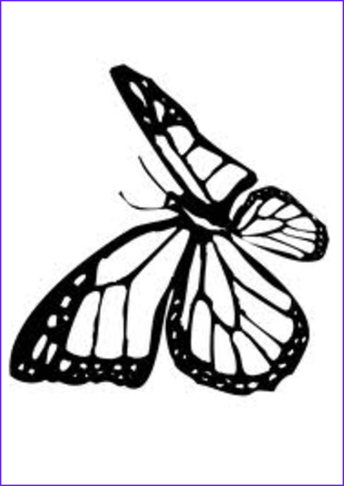 Monarch butterfly Coloring Pages Best Of Image Monarch butterfly Coloring Pages for Kids Disney