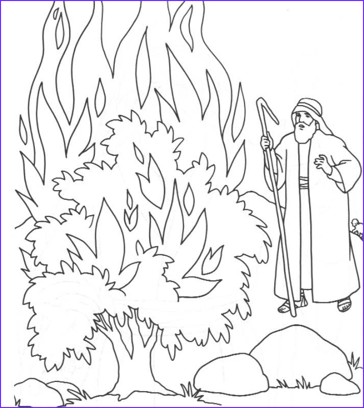 Moses and the Burning Bush Coloring Pages Awesome Stock the Call Of Moses Colouring Pages