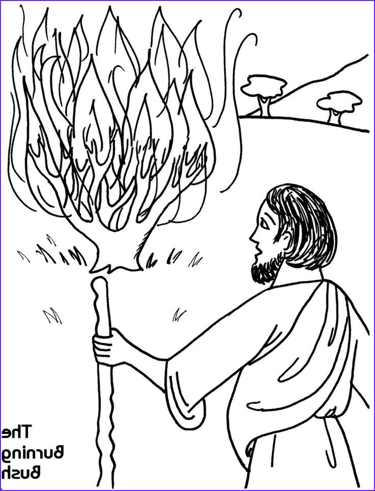 Moses and the Burning Bush Coloring Pages Best Of Photography 33 Best Coloring Bible Ot Exodus–deuteronomy Images On