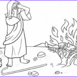 Moses And The Burning Bush Coloring Pages Cool Photography Burning Bush Coloring Pages