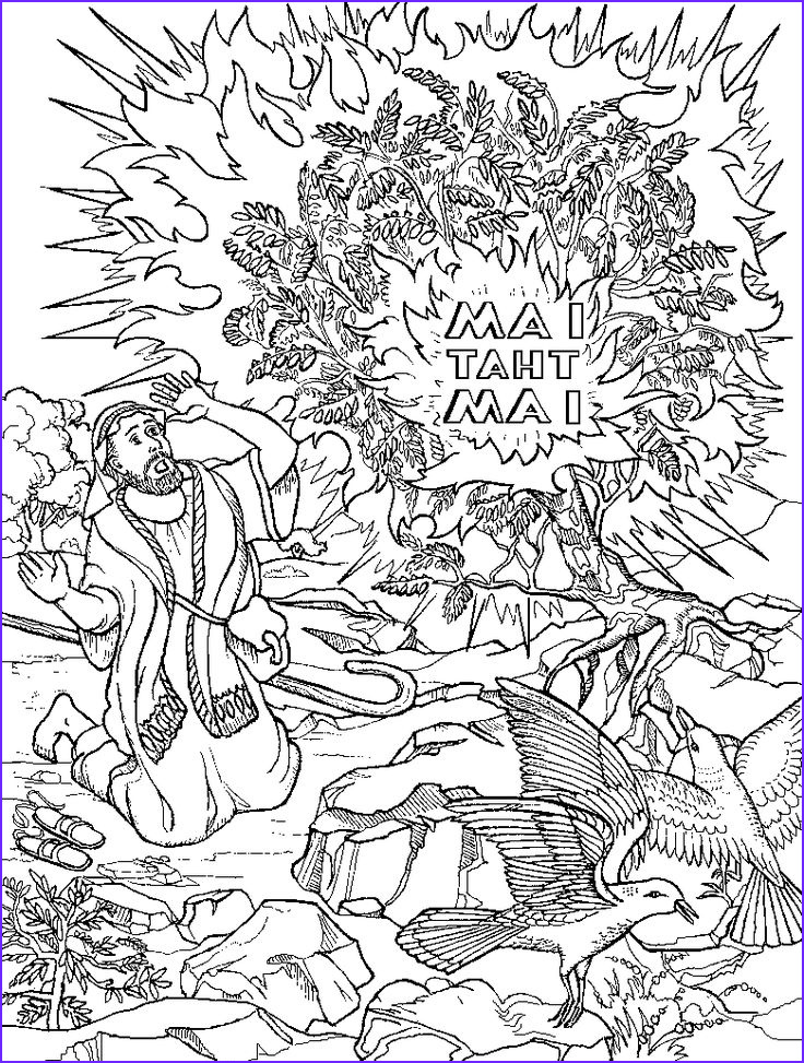 Moses and the Burning Bush Coloring Pages Unique Photography 749 Best Images About Church Nursery Ideas On Pinterest
